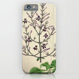 Flower 1380 justicia venusta Beautiful Justicia15 iPhone Case