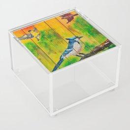 Three Little Birds Acrylic Box