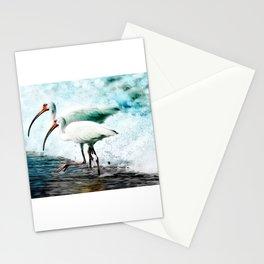 Ibis Splash Stationery Cards