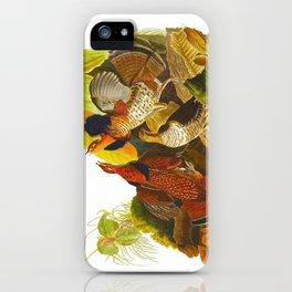 Ruffed Grouse Bird iPhone Case