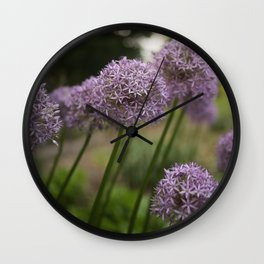 Purple Allium Ornamental Onion Flowers Blooming in a Spring Garden 5 Wall Clock