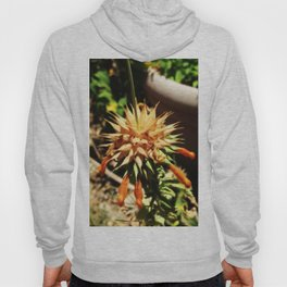 Desert Flower Hoody