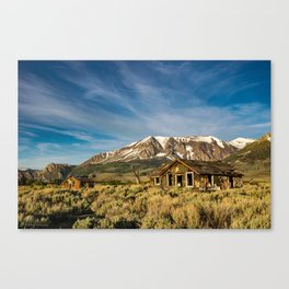 Days Gone By - I Canvas Print