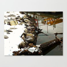 Frosted Reflection Canvas Print