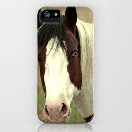 Heterochromian  iPhone Case