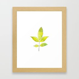 leaves painted with watercolor . designer paintings for eco-style . eco style interior . Sustainable Framed Art Print