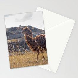 Alpaca in Cusco Stationery Cards
