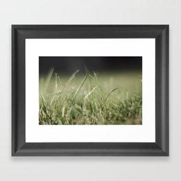 The Grass Is Always Greener Framed Art Print