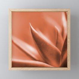 Succulent Leaves Coral Color #decor #society6 #buyart Framed Mini Art Print