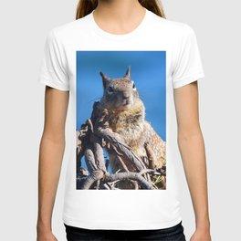 A Little Cheesecake T-shirt