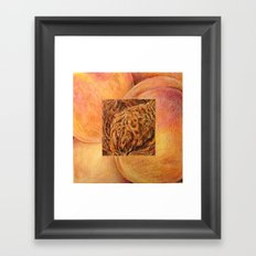 Fresh: Peach Framed Art Print
