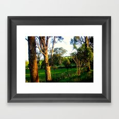 Evening light, Country Farmlands Framed Art Print