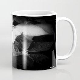 Mixed Color Poinsettias 2 Dark Coffee Mug