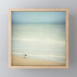 Sandpiper Bird on Beach Photography, Shore Birds Ocean Art, Calming Blue Coastal Photo Sea Print Framed Mini Art Print