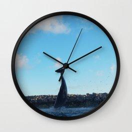 Dolphin Tail Wall Clock