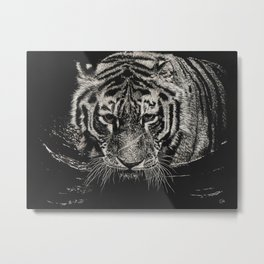 The Tiger Swims at Night Metal Print