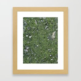 Life on a Rock at the Top of a Mountain Framed Art Print