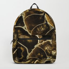 Detailed Fossil Backpack