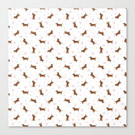 Dachshund Pattern - White Canvas Print