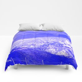 Radiography of nature. Comforters