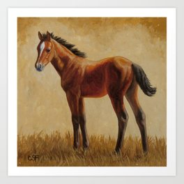 Bay Quarter Horse Foal Art Print