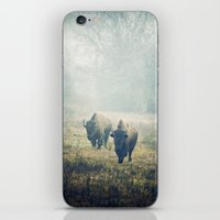 bison iPhone & iPod Skins featuring Bison by Slight Clutter