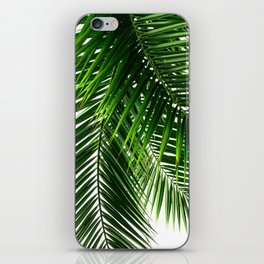 Palm Leaves #3 iPhone Skin