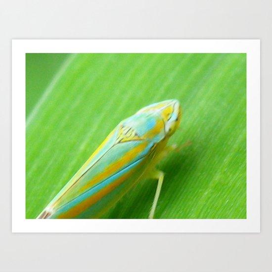 jumping bug Art Print
