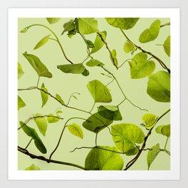 The Life of Plants Art Print