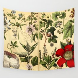 Natural History of the Plant Kingdom 035 Wall Tapestry