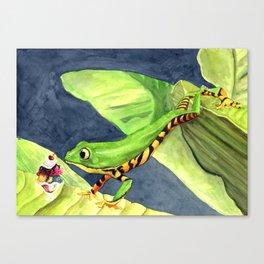 Sundae in the Canopy Canvas Print