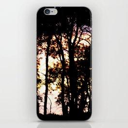 Prairie trees at Sunset iPhone Skin