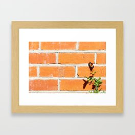 The poetry of ordinary things Framed Art Print