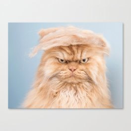 Trumpy Cat,best gift for cat lovers Canvas Print