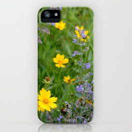Wildflowers , Coreopsis and Tickseed iPhone Case