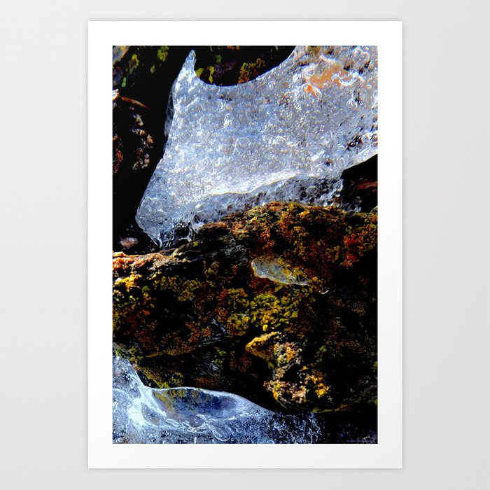 """""""A Crown of Frost"""" Art Print"""