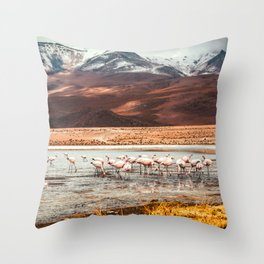 Flamingo Lake, Bolivia #society6 #buyart #homedecor Throw Pillow