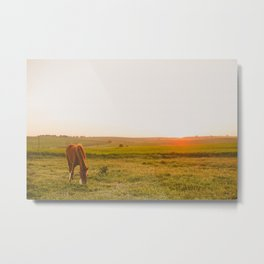 Summer Landscape with Horse Metal Print