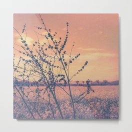 Imperfect Beauty (Beginning of Spring, California Countryside Farm) Metal Print