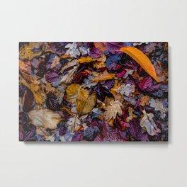 October Understory Metal Print