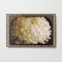 White Antique Flower Metal Print