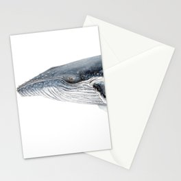 Humpback whale portrait Stationery Cards