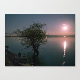 Moonrise over Sandbanks Canvas Print