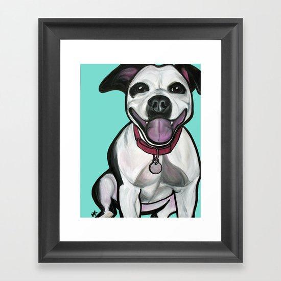 Dolce the Pitbull Framed Art Print
