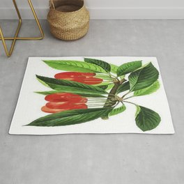 Red Cherries Vector on White Background Rug