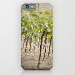 Vineyard Perspective iPhone Case