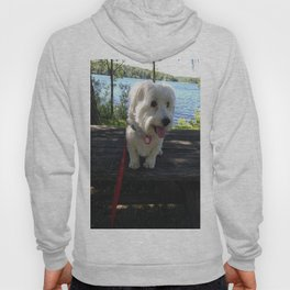 Puppy at the Lake Hoody