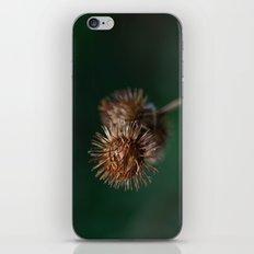 Burr iPhone & iPod Skin
