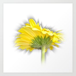 yellow gerbera daisy Art Print