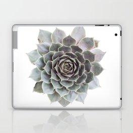 Succulent burst Laptop & iPad Skin